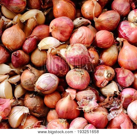 Abstract background of shallots in the basket.