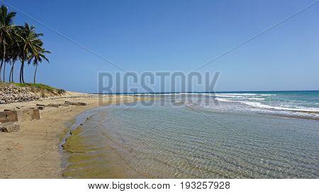 Tropical Hideaway Beach