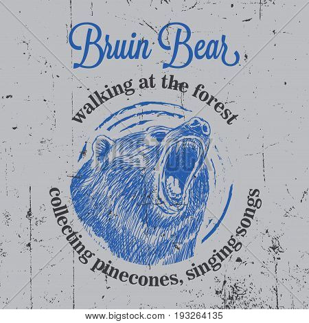 Bruin Bear Vintage Poster with animal walking at the forest and collecting pinecones vector illustration