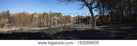 Panorama Of Burnt Forest Alongside A Burnt Shed  - Pedrogao Grande