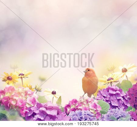 Flower Blossom Background with a Yellow Bird