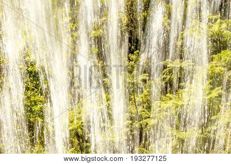green palm tress and waterfall image