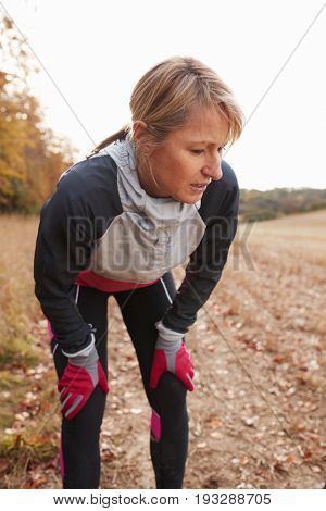 Mature Female Runner Pausing For Breath During Exercise In Woods