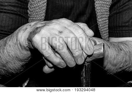 Hands. Hands of old lady with walking stick. Old woman hands. Black and white.