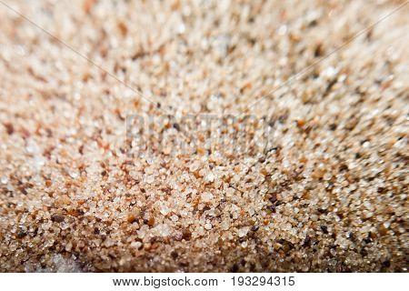 Coarse sand background texture. Macro of coarse sand grains.