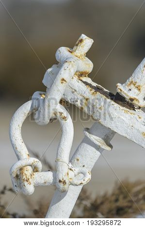 Rusting shackles and iron hardware in marsh