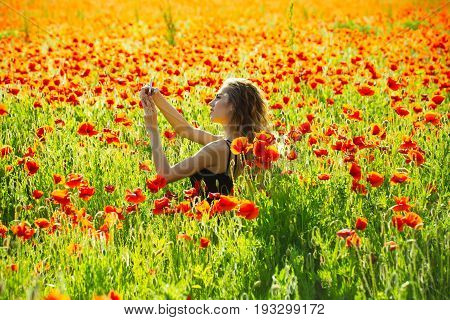 Woman In Field Of Poppy Making Selfie Photo With Phone