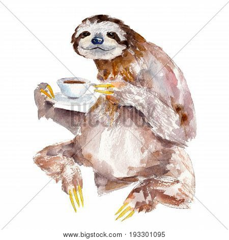 Watercolor illustration of sloth with cup of coffee isolated on white background