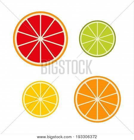 Collection of citrus slices - grapefruit lime lemon and orange fruit icon set vector illustration