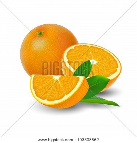Isolated colored group of orange slice half and whole juicy fruit with green leaf and shadow on white background. Realistic citrus