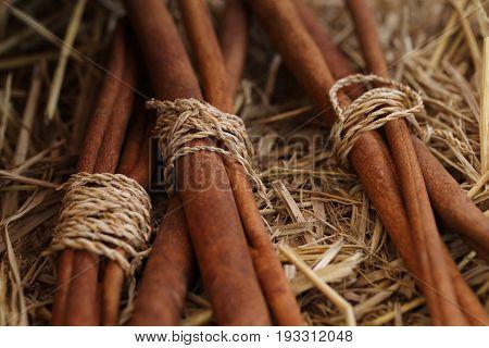 Bunch of cinnamon sticks shallow depth of field.