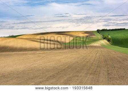 Freshly sown agriculture ground with wavy meadows on South Moravia