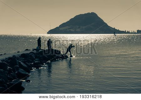 Split toned image blue hues Mount Maunganui on horizon over Tauranga Harbor from Sulphur Point with small silhouettes of people fishing and one throwing a net from rocks.