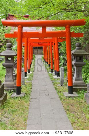 AKITA JAPAN - MAY 26 2017: Corridor of red torii gates in Hachiman Akita Shinto Shrine in Akita Japan. Located on the grounds of former main bailey of Kubota Castle