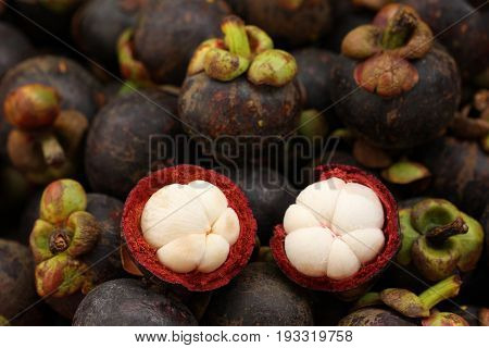 Cross section of mangosteen showing white flesh of the fruits.