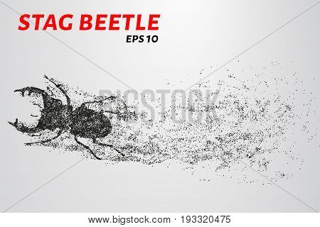 Beetle Of The Particles. Beetle Consists Of Small Circles And Dots. Vector Illustration