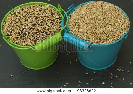 Food for birds, seed mixture, a green bucket with seed mix and a blue bucket with birdseed