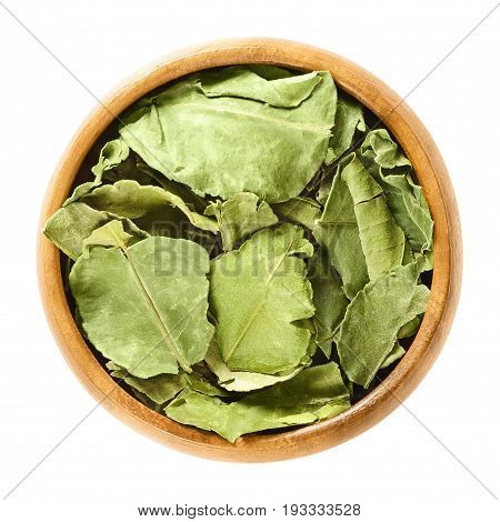 Dried kaffir lime leaves in wooden bowl. Green leaves of Citrus hystrix, also makrut lime or Mauritius papeda. Asian citrus fruit plant. Macro food photo close up from above on white background.