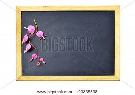 Valentines Day empty blackboard with bleeding heart flowers
