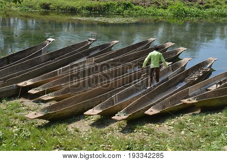 Canoeing safari Wooden rowboats Pirogues on the Rapti river. Chitwan national park, Nepal