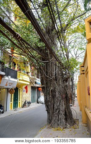 Hanoi Vietnam - Feb 20 2017 : Tangled and messy electrical cables on electric pole on street side in Hanoi