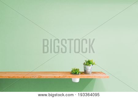 Wooden shelf on green vintage wall with plant.