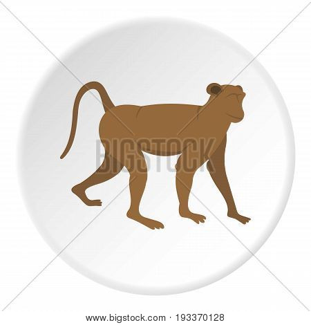 Brown monkey icon in flat circle isolated on white background vector illustration for web