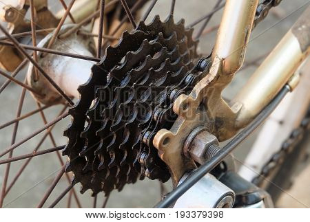 Bicycle Gears Disc Brake and Rear Derailleur of Mountain Bicycle Bike or Track Cycling.
