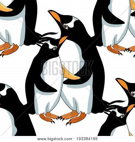 Seamless Pattern Subantarctic  Penguin Papuan Vector Illustration