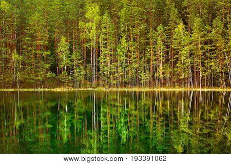 Smal Lake in the Forest. Aglona District Latva