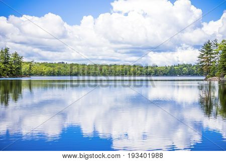Fresh Relaxing Landscape With Lush Green Forest Surrounding A Clear Calm Lake In The Nothern Wildern