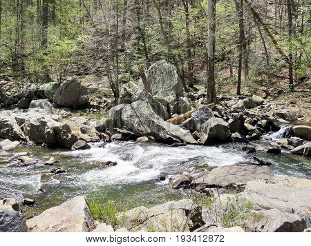 The Mine Run Branch River tributary of the Potomac River near Washington DC 18 April 2016 USA