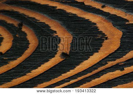 Natural wood texture wooden table close-up close range