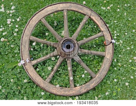Cart-wheel. Wheel from the trolley. Wooden old with iron rusty rim.