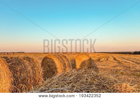 Summer field with straw bales. Standing close to the hay rolls.