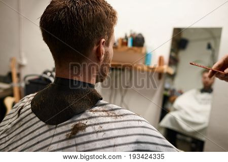 Back view of guy sitting in chair at barbershop having his hair cut by experienced hairstylist. Process of creating new hairdo by professional hairdresser during workshop. Beauty fashion and style