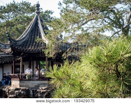 Suzhou, China - Nov 5, 2016: Master of Nets Garden (Wang Shi Yuan) - Sunlit pine leaves in foreground while background blur (bokeh) consists of a traditional Chinese building in classic architectural styling.