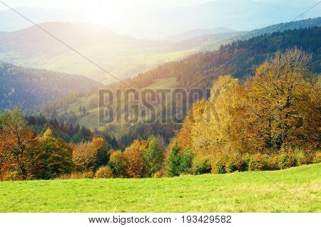 Scenic Colorful Fall Landscape. Colorful Hills. Lesser Poland Europe.