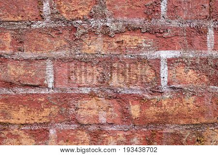 The red brick wall of the abandoned ruins.