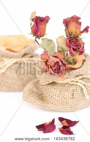 Bouquet of dried withered roses in sackcloth bag on white background.