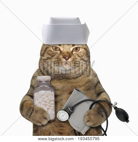 The cat doctor is holding a pill bottle and a blood pressure cuff. White background.