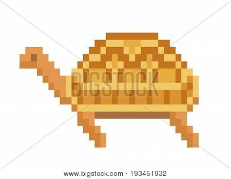Old school 8 bit pixel art brown pet tortoise standing on the ground. Wild turtle icon isolated on white background. Zoo reptile symbol/sign/emblem. Retro video/pc game character.Slot machine graphics