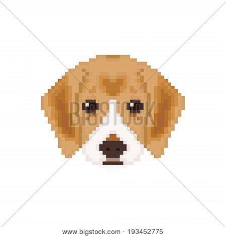 Beagle puppy head in pixel art style. Dog vector illustration.