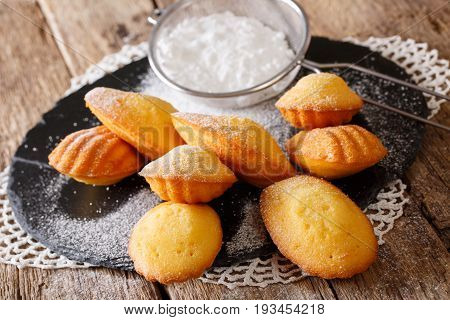 Classic Biscuits Madeleines With Powdered Sugar Close-up On The Board. Horizontal