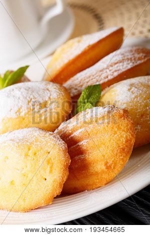 Freshly Baked Home Madeleine Cookies With Powdered Sugar Macro On A Plate. Vertical