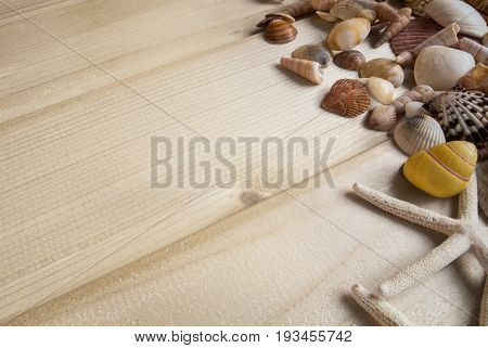 Bright Wooden Baackground With A Collection Of Sea Shells At The Side, Yellow, Pink, White And Broun