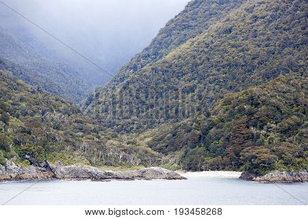 The ever green landscape in Fiordland National Park (New Zealand).