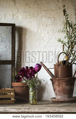 Beautiful Old Vintage English Countryside Garden Potting Shed Interior Detail