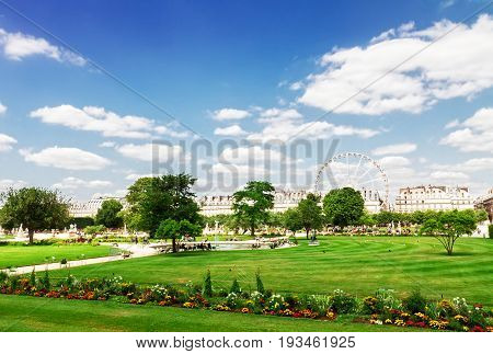 Tuileries garden at summer day, green lawn and blue sky with clouds, Paris France, retro toned