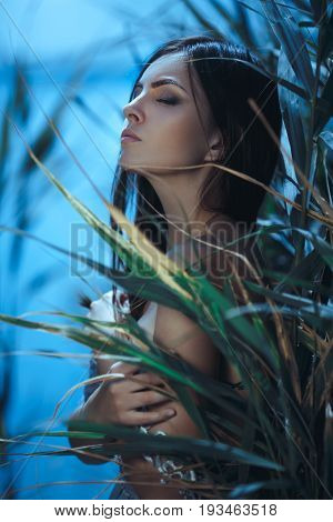 Fashion Art Photo. Model Girl Portrait in Moonlight at Night. Sexy Glamour Mystical Beautiful Woman in blue dress standing in canes over water background. Beautiful fashion creative shot of seductive multi-racial Asian Caucasian sexy female. Girl with clo